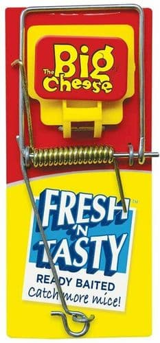 Humane Mouse Trap Baited Mousetrap Traditional Ready to Use Easy Set Spring Trap